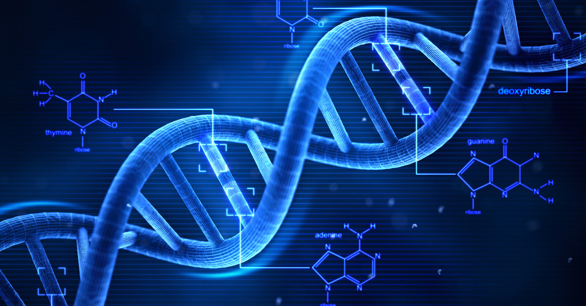 ethylene genetics essay Biology explore the science of life by learning about the systems and structures that make up the organisms of our world genetics quiz: mendelian genetics article.